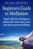 Beginners Guide to Meditation: Simple Effective Techniques to quieten your minds, reduce stress and improve general well being.