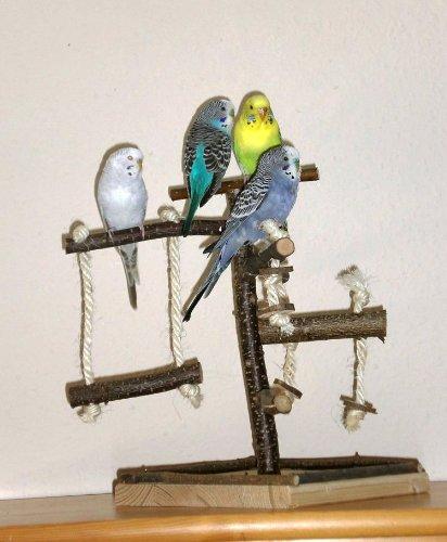 Vogelspielplatz selber bauen. Bausatz für tolles Vogelspielzeug aus Naturholz!