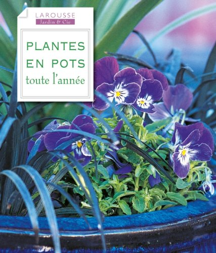 plantes-en-pots-toute-lannee