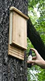Bat House Attractant-Attract Bats to your Bat House
