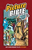img - for The Picture Bible book / textbook / text book