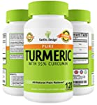 Turmeric Curcumin Extract, Proven Pai...