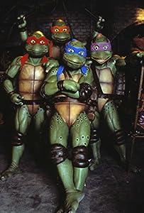 4 Film Favorites: Teenage Mutant Ninja Turtles [DVD] [Region 1] [US Import] [NTSC]