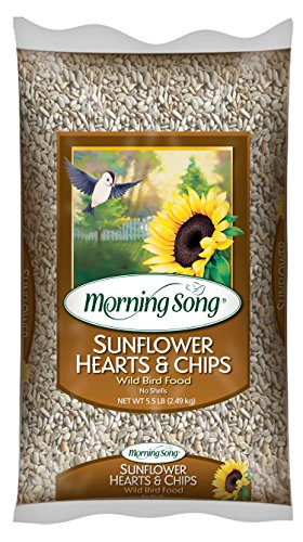 Morning Song 11979 Sunflower Hearts and Chips Wild Bird Food, 5.5-Pound (Morning Song Sunflower Seeds compare prices)