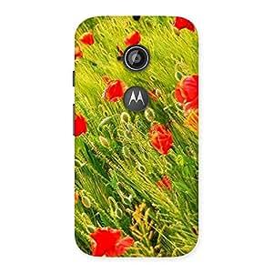 Beauty Flowers Farm Back Case Cover for Moto E 2nd Gen
