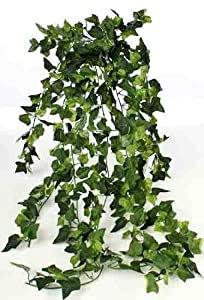 Amazon.com: Classic Greenery Artificial Silk Cascading 24
