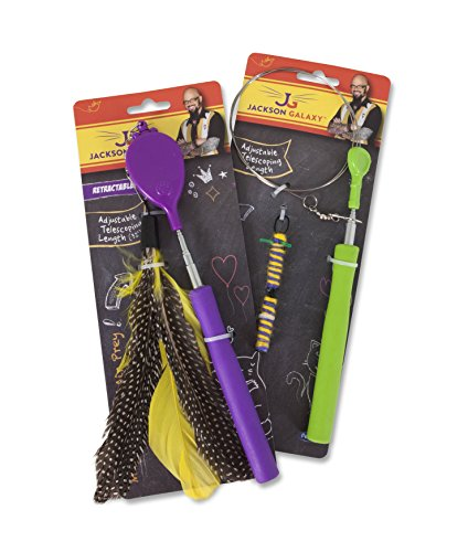 Video review jackson galaxy air wand with 1 toy best for Jackson galaxy mojo maker air wand