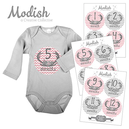 12 Monthly Baby Stickers, Deer Antlers, Flowers, Baby Girl, Baby Belly Stickers, Monthly Onesie Stickers, First Year Stickers Months 1-12, Pink, Grey, Gray, Chevron, Deer Antlers, Girl