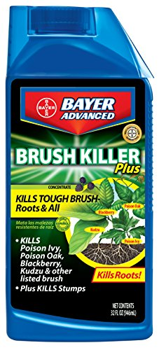bayer-advanced-704640-brush-killer-plus-concentrate-32-ounce