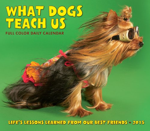 What Dogs Teach Us 2015 Box Calendar