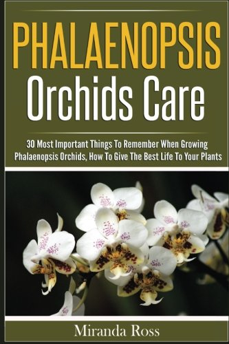 phalaenopsis-orchids-care-30-most-important-things-to-remember-when-growing-phalaenopsis-orchids-vol