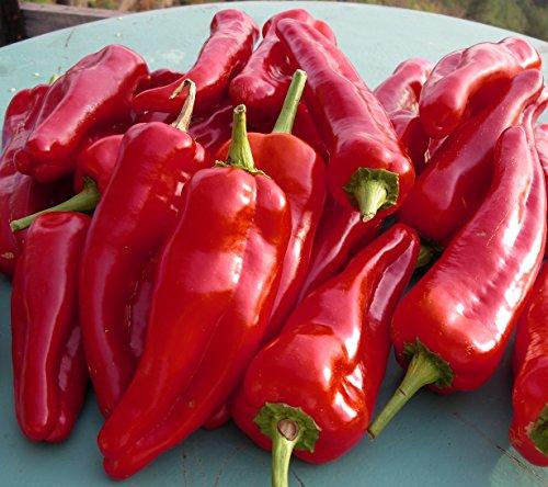 doux-despagne-heirloom-basque-region-pepper-premium-seed-packet-more