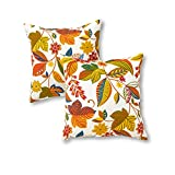 Greendale Home Fashions Indoor/Outdoor Accent Pillows, Esprit, Set of 2