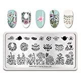 Summer Fruit Nail Art Stamping Template Tropical Punch Pattern Rectangle Image Plate Stamping Polish Needed BP-S-L007 (Color: BP-S-L007)