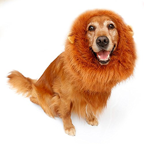 Dog Wigs, Itery Dog Lion Mane Wig Hair for Pet Halloween Festival Party Fancy Costume Clothes