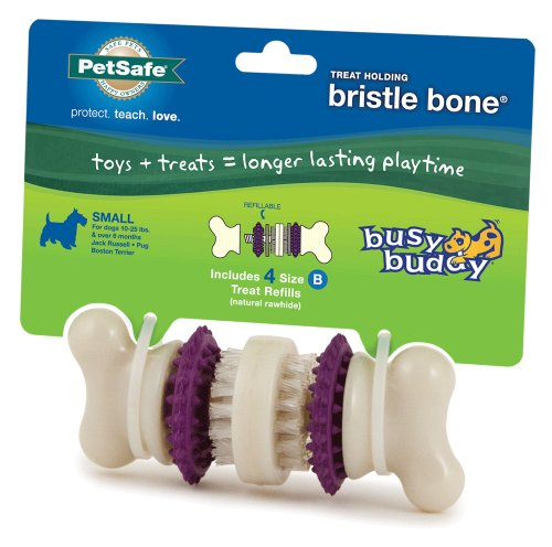 PetSafe Pet Products Busy Buddy Bristle Dog Bone, Small