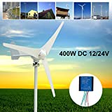 Davitu Alternative Energy Generators - Max 500W Wind Turbine Generator DC 12V 24V 3/5 Blade Power Supply + Charge Controller - (Voltage: 24V) (Color: 24V)
