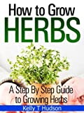 How to Grow Herbs: A Step By Step Guide to Growing Herbs