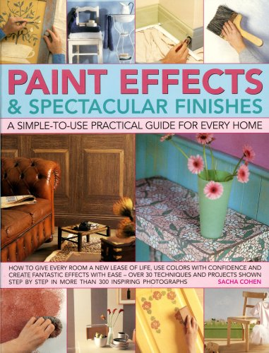 paint-effects-and-spectacular-finishes-a-simple-to-use-practical-guide-for-every-home