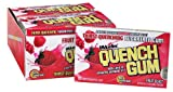 Quench Gum Sugar Free Fruit Blast 12 - Count Tray