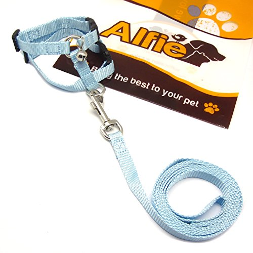 Alfie Pet by Petoga Couture - Kobi Harness and Leash Set (For Small Animals like Guiena Pigs and Rabbits) - Color: Blue Black