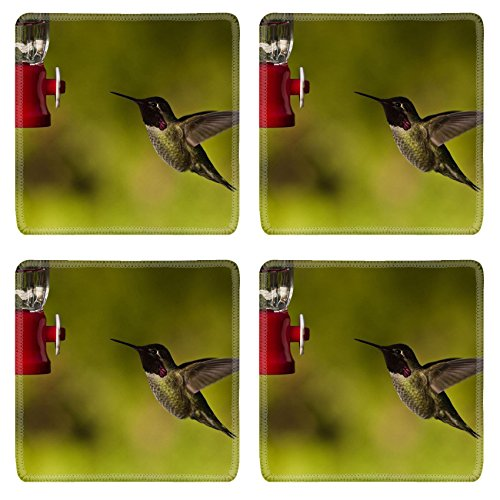 MSD Natural Rubber Square Coasters 4 Pack Per Order Hummingbird and feeder Side view of hummingbird hovering next to a bird feeder IMAGE 20389323