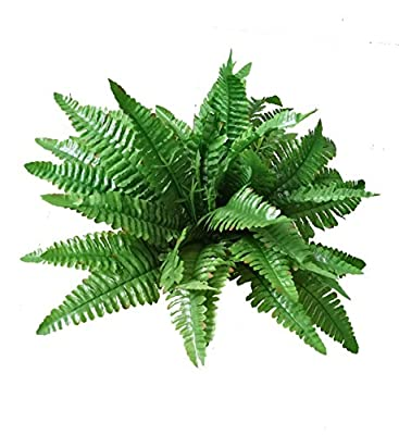 Artificial Silk Persian Grass Nearly Natural Fern Plan