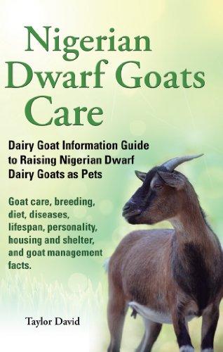 Download Nigerian Dwarf Goats Care