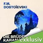 Die Brüder Karamasow | Fjodor M. Dostojewski