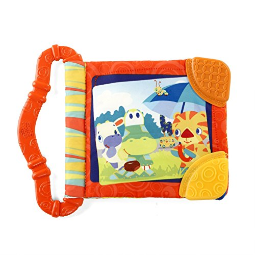 Bright Starts Teether front-1054583