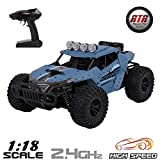 Remote Control Car RC Car 1/18 Scale 2.4Ghz 25km/h Fast Race Radio Controlled Monster Truck Electric Vehicle RTR Rock Crawlers Off Road Rock Climbing Car All Terrain RC Buggy Toy Car for Kids & Adults (Color: Gray-blue, Tamaño: 1/18 scale)
