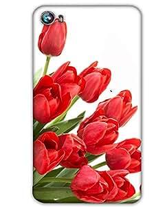 WEB9T9 Micromax Canvas Fire 4 A107back cover Designer High Quality Premium Matte Fin...
