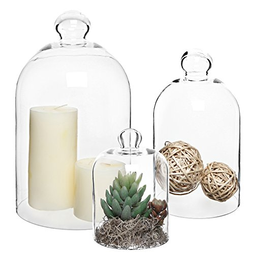 Set of 3 Decorative Clear Glass Apothecary Cloche Bell Jars / Plant Terrarium / Centerpiece Dome Display