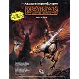Greyhawk Adventures (Advanced Dungeons & Dragons Rulebook)