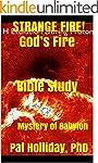 STRANGE FIRE! God's Fire Bible Study:...