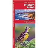Oregon Birds: A Folding Pocket Guide to Familiar Species (Pocket Naturalist Guide Series)