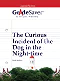img - for GradeSaver (TM) ClassicNotes: The Curious Incident of the Dog in the Night-time book / textbook / text book