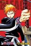 Bleach (3-in-1 Edition), Vol. 1: Incl...
