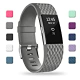 POY Replacement Bands Compatible for Fitbit Charge 2, Adjustable Sport Wristbands, Large Gray, 1PC