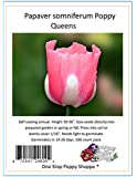 100 Poppy Flower Seeds. Queens Poppies. Papaver somniferum. One Stop Poppy Shoppe® Brand.