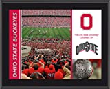 Ohio State Buckeyes Sublimated 10x13 Plaque Amazon.com