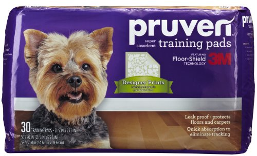 Toilet Training Products front-1031674