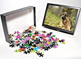 Photo Jigsaw Puzzle of Dog - German Shep...
