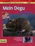 Degu, zu Hause