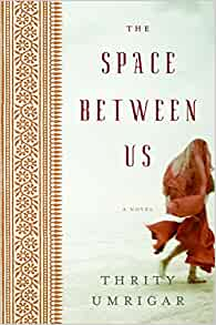 Is the space between us a book