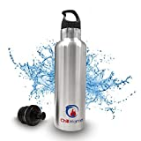 ChillWarmer HydroMate Stainless Steel Insulated Sport Water Bottle, 25 Oz, Brushed Silver