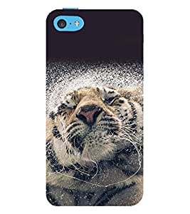 printtech Nature Animal Tiger Splash Back Case Cover for Apple iPhone 5C