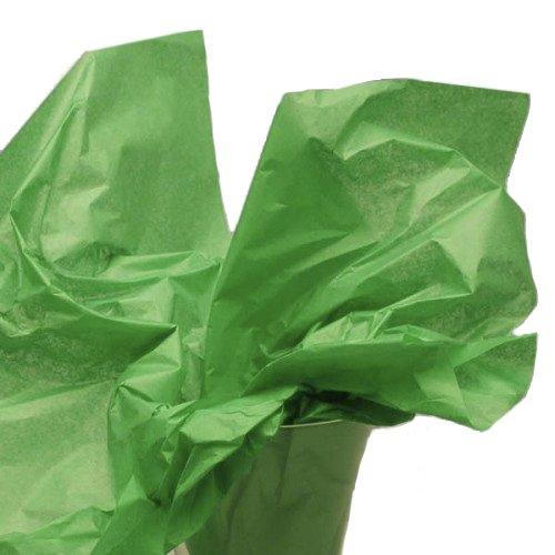 Dress My Cupcake DMC79518 200-Piece Tissue Paper, 20 by 14-Inch, Kelly Green