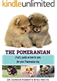 The Pomeranian: A vet's guide on how to care for your Pomeranian dog