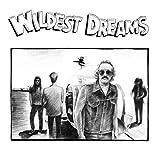 ワイルデスト・ドリームス (Wildest Dreams)